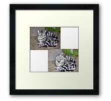From Doze to Alert in a Nano-Second Framed Print