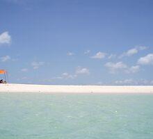 Zanzibar Paradise  by CanIrish