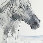 Horse Head Drawing by MikeJory