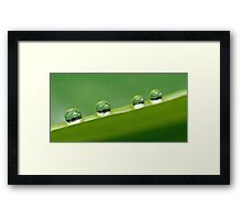 another green world Framed Print