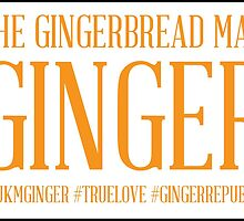 THE GINGERBREAD MAN  by Johnathan Geary