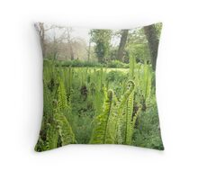 Ferns awaking  Throw Pillow
