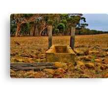 """Dry Stony Ground"" Canvas Print"