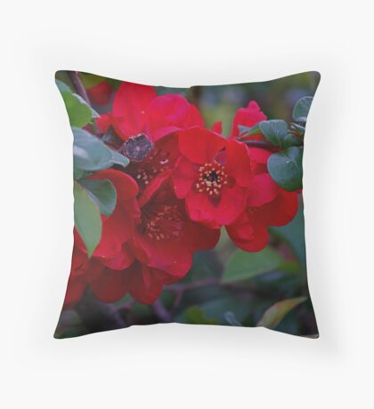 Quince Throw Pillow