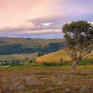 On the Moors by goodie