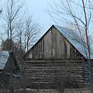 Barns I would live in... :) by TerriRiver
