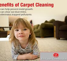 Benefits of Carpet Cleaning by EliteccrNC