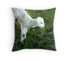 wooly jumper ... Throw Pillow