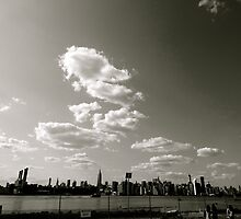 View From Queens  by virginiatpuri