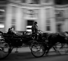 Horse and Carriage in Vienna, Austria by thirdiphoto