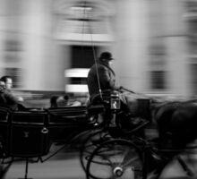 Horse and Carriage in Vienna, Austria Sticker