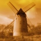 Bidston Mill 2 by Paul James
