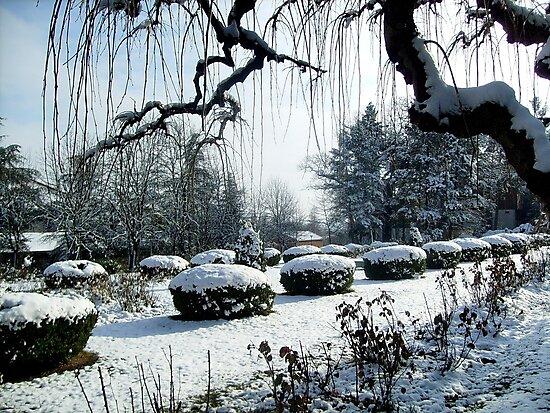 Winter atmosphere by Ana Belaj