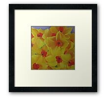 Spring Fever Year-Round, Narcissus Framed Print