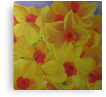Spring Fever Year-Round, Narcissus Canvas Print
