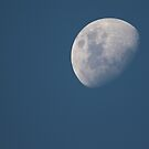 Waxing Gibbous - Dec 31 2014 by Sandra Chung
