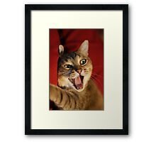 wanna hear a good joke ? Framed Print