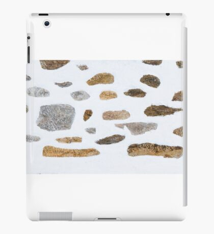 Rustic iPad Case/Skin