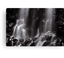 Mungalli Falls in Black & White Canvas Print