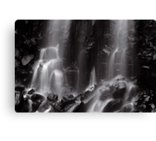 Mungalli Falls in Black & White Canvas Print