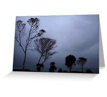 Storm at Coles Bay Greeting Card