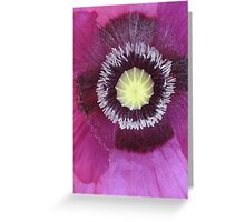 Purple poppy rectangle Greeting Card