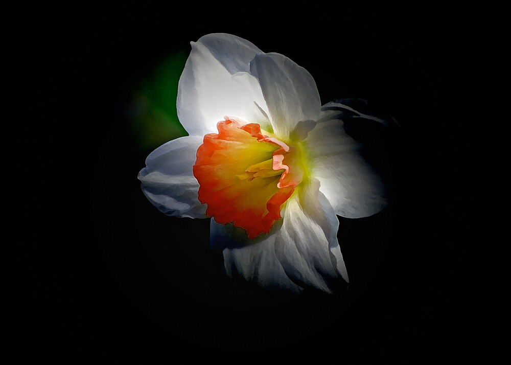 Spring by Christina Martin