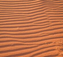 Desert Sands by Malcolm Snook