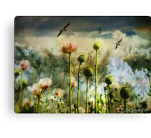 Let the flowers grow Canvas Print