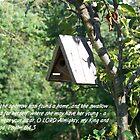 Bird house by Kadava