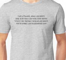 I am a little Paladin Unisex T-Shirt