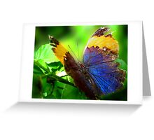 Beauty Inside Greeting Card