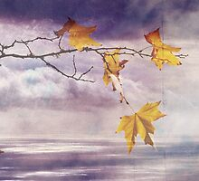 Faded Leaves - JUSTART ©  by JUSTART