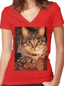WaiFai in Retro Style 3 Women's Fitted V-Neck T-Shirt