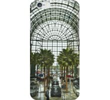 Lines & Curves iPhone Case/Skin