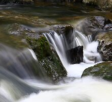 Rock Flow by Claire Sloane
