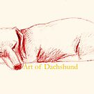 Art of Dachshund - Sleeping Dachshund by dvampyrelestat