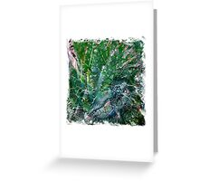 The Atlas Of Dreams - Color Plate 107 Greeting Card