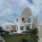 Seashell house by Cathy Klima