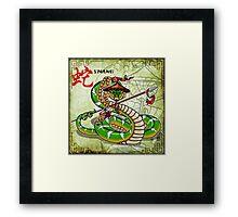 Snake Spear Framed Print