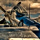 P-51 Mustang by Alistair Wilson