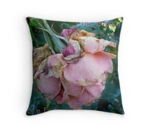 The Beauty of a Faded Rose Throw Pillow