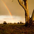 Double Rainbow at Bridgewater by Aden Brown