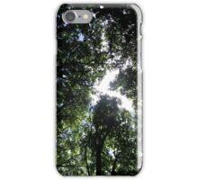 Below the canopy iPhone Case/Skin