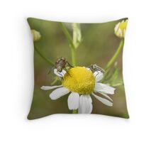 Daisy and Insects Throw Pillow