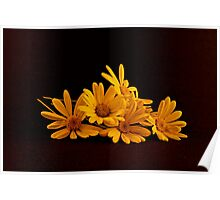 A Bouquet of Yellow Daisies Laying on a Black Background Poster