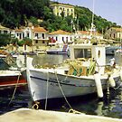 Boats at Vathay  by Barry Thomas