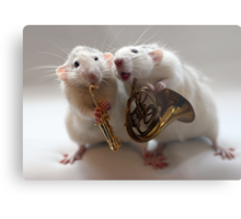 Two little musical brothers. Metal Print