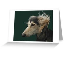 Saluki beauty Greeting Card