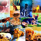 Dog Calendar by Nancy Stafford